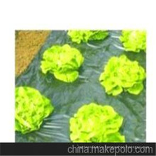 PP Woven Garden Landscape Fabric/Landscape Fleece/Landscape Protection Cover